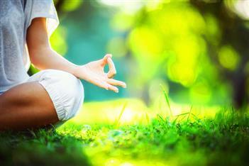 Free Meditatie