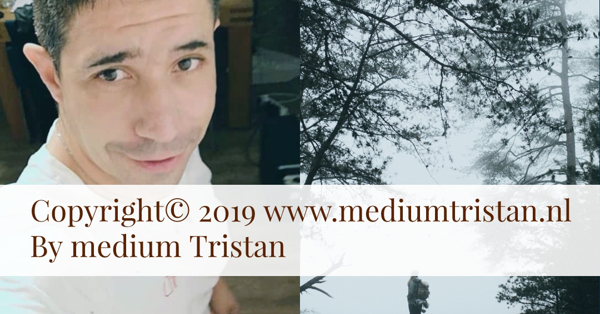 Medium paragnost Tristan beste 2019 no 1